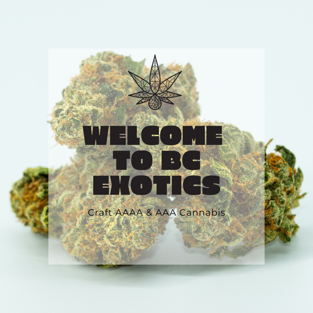 best dispensary vancouver